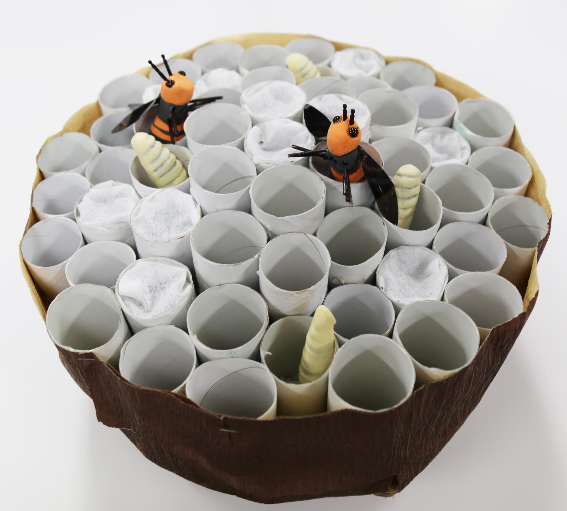 家のハチの巣
